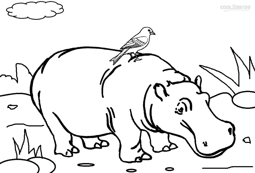 Hippo coloring #18, Download drawings