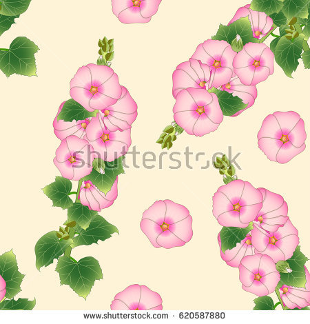 Hollyhocks clipart #12, Download drawings