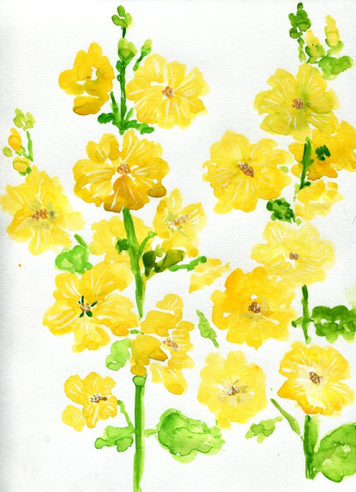 Hollyhocks clipart #2, Download drawings
