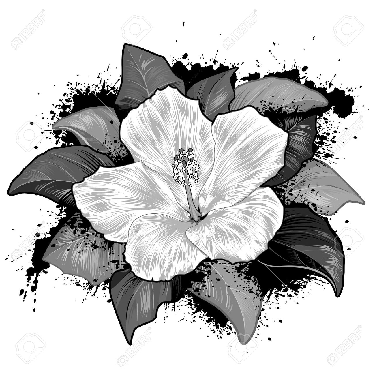 Hollyhocks clipart #1, Download drawings