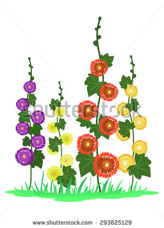 Hollyhocks clipart #14, Download drawings