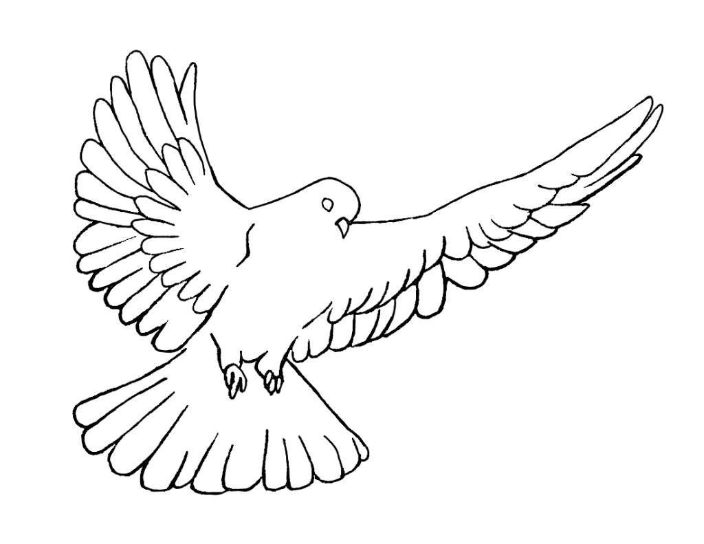 Holy Dove clipart #16, Download drawings