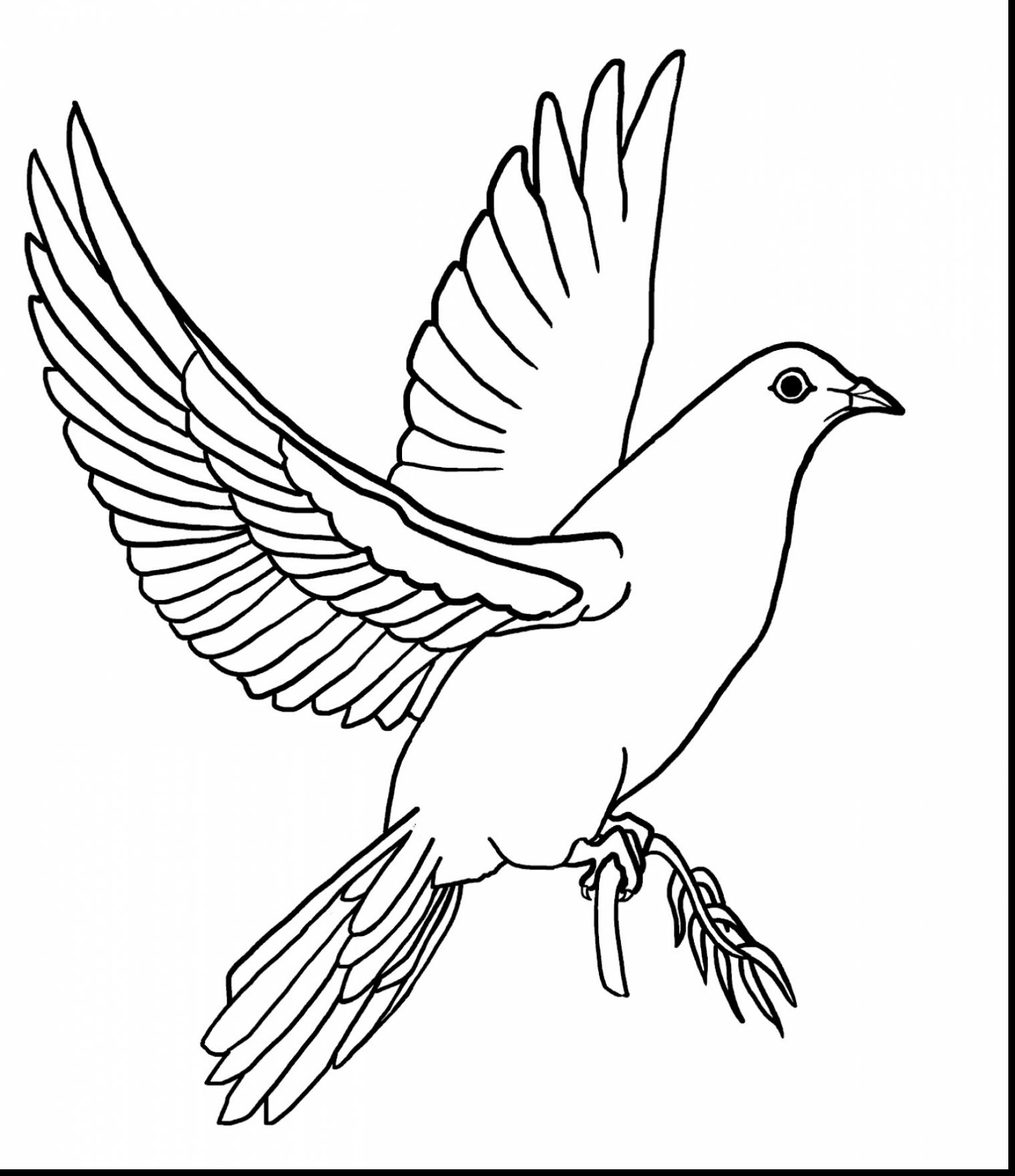 Holy Dove coloring #9, Download drawings