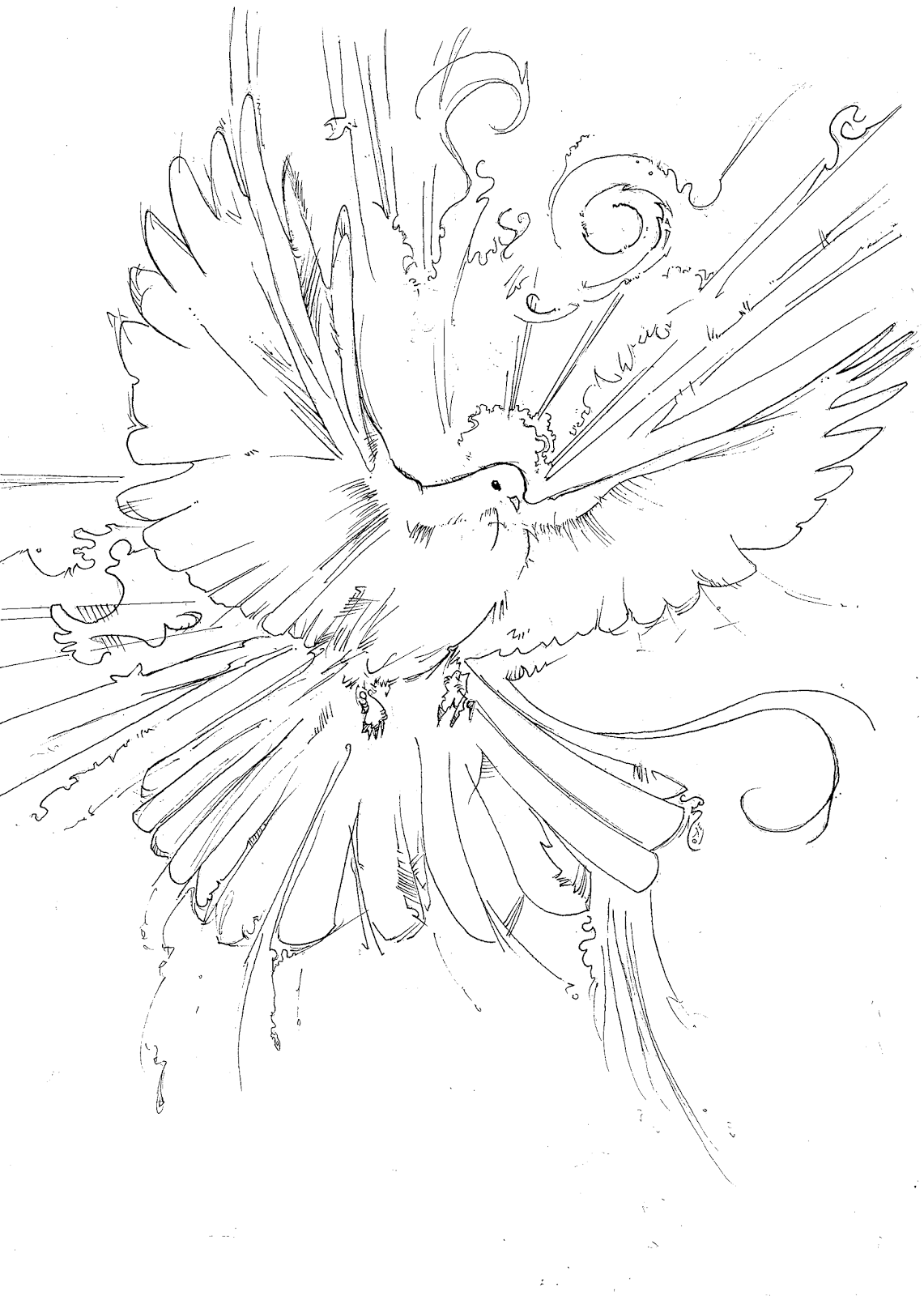 Holy Dove coloring #14, Download drawings