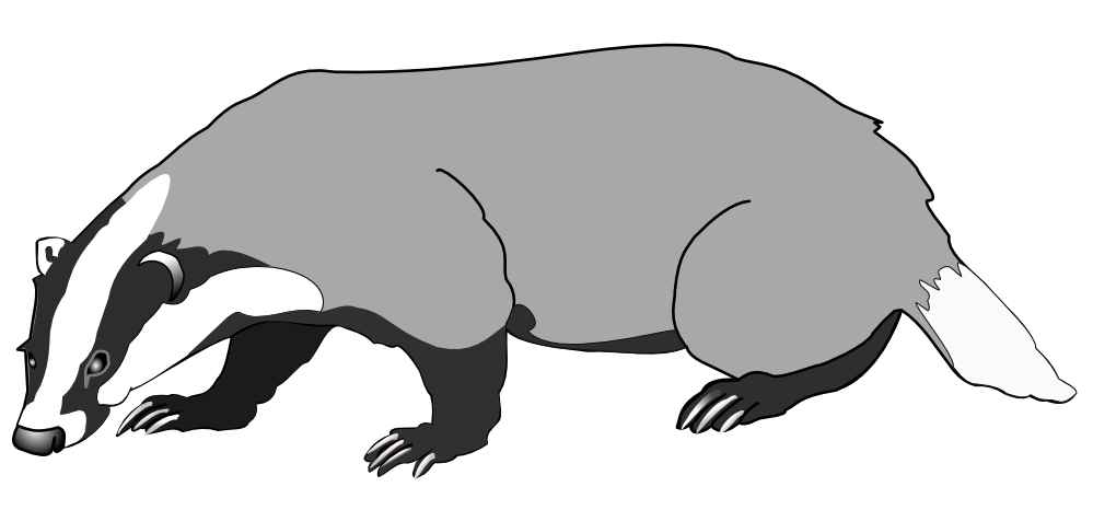 Honey Badger clipart #6, Download drawings