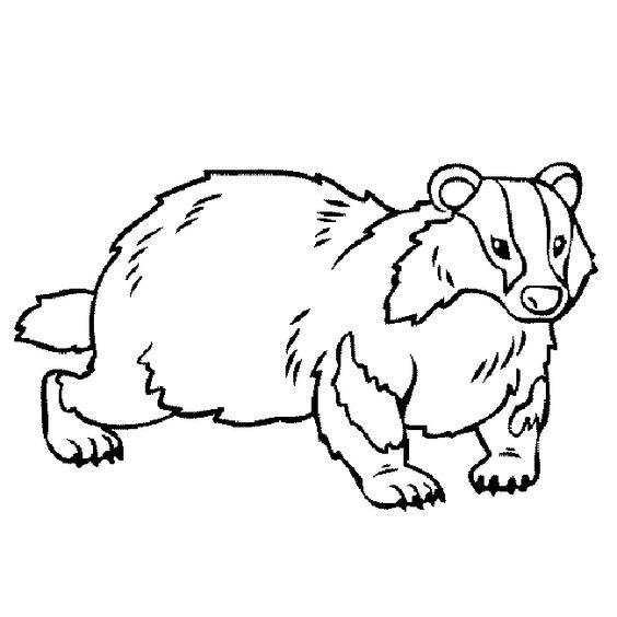 Honey Badger coloring #4, Download drawings