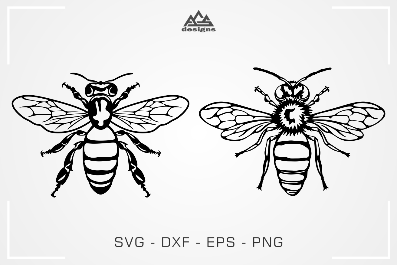honey bee svg #624, Download drawings