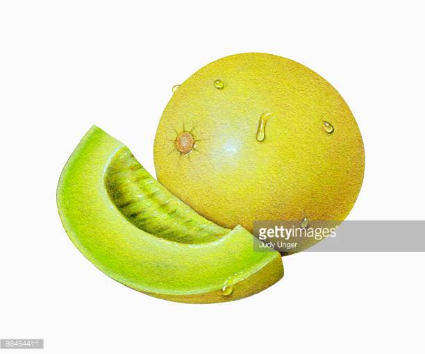 Honey Dew Melon clipart #10, Download drawings