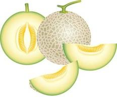 Honey Dew Melon clipart #5, Download drawings
