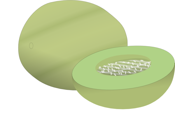 Honey Dew Melon clipart #14, Download drawings