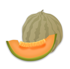 Honey Dew Melon clipart #4, Download drawings