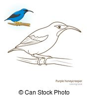 Honeycreeper clipart #1, Download drawings