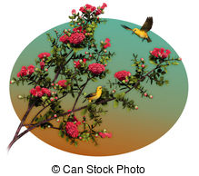Honeycreeper clipart #4, Download drawings