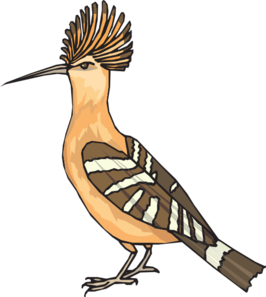 Hoopoe  clipart #1, Download drawings