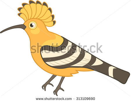 Hoopoe  clipart #13, Download drawings