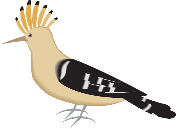 Hoopoe  clipart #7, Download drawings