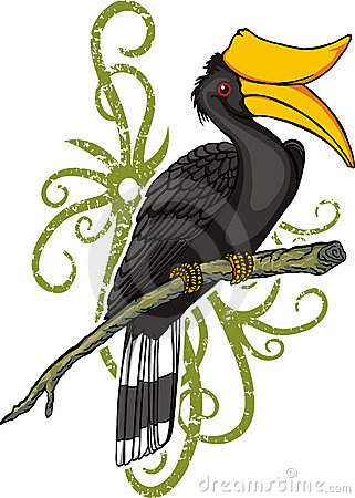 Rhinoceros Hornbill clipart #2, Download drawings