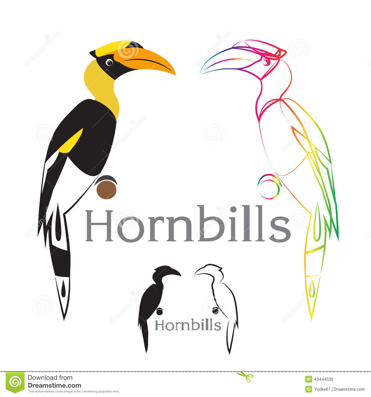 Hornbill clipart #3, Download drawings