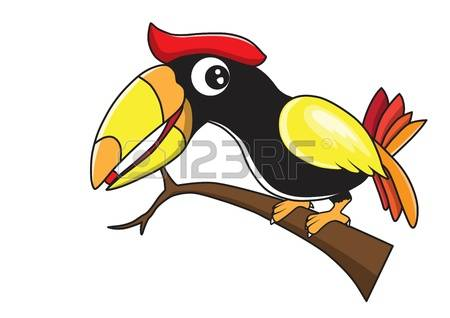 Hornbill clipart #11, Download drawings