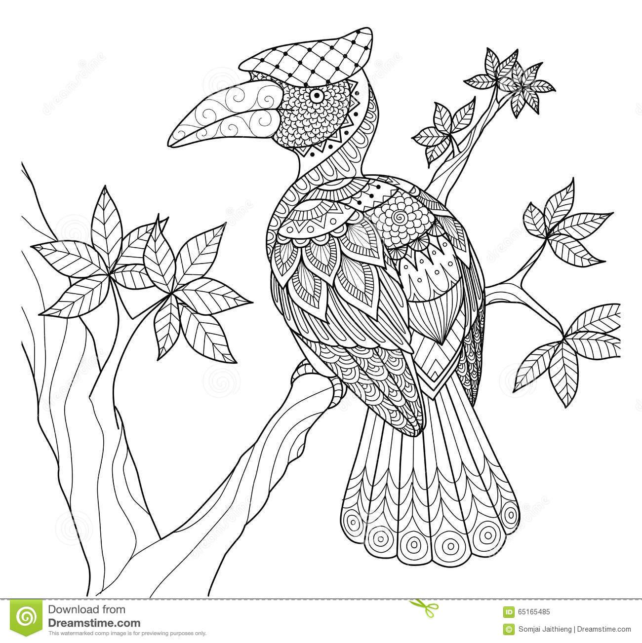 Hornbill coloring #9, Download drawings
