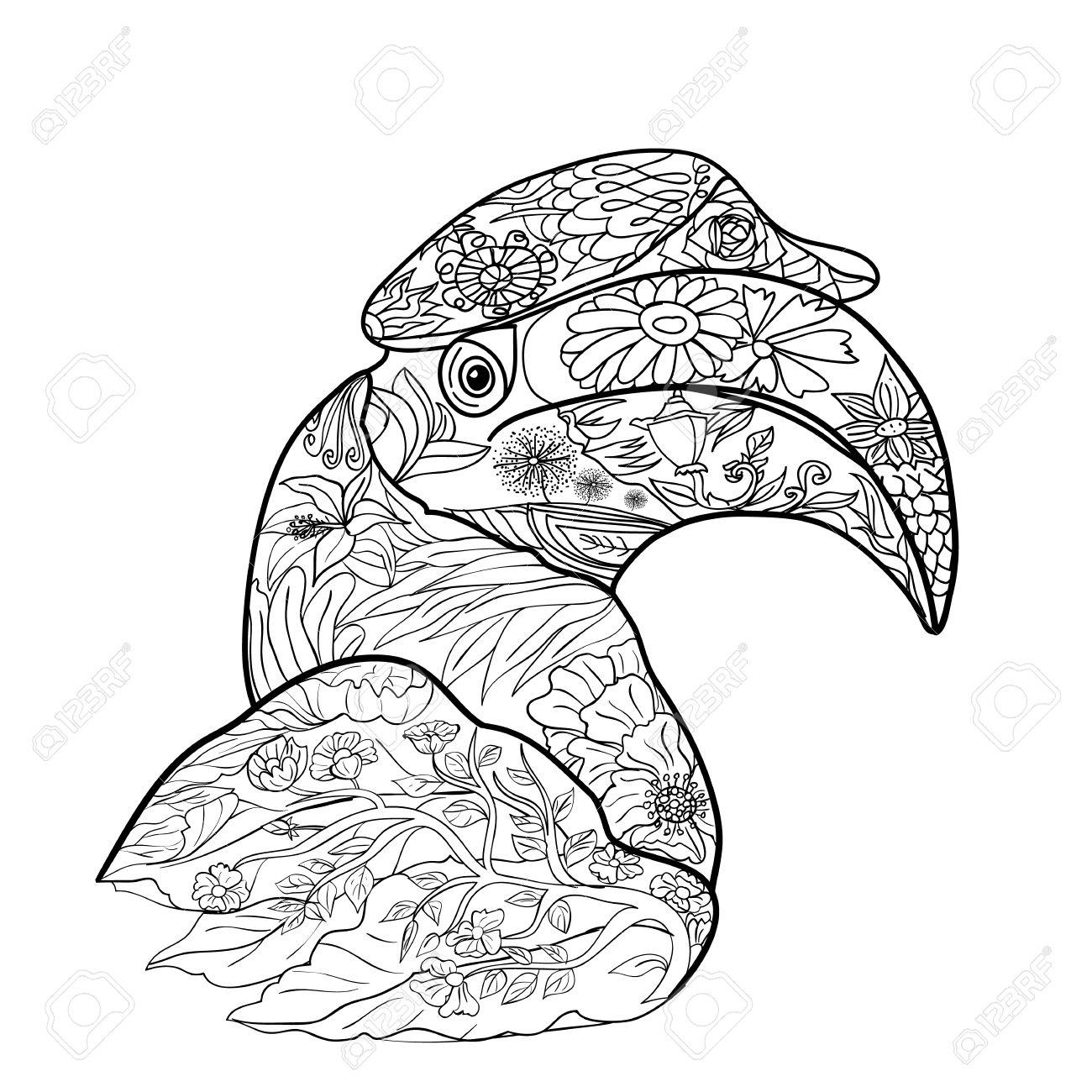 Hornbill coloring #18, Download drawings
