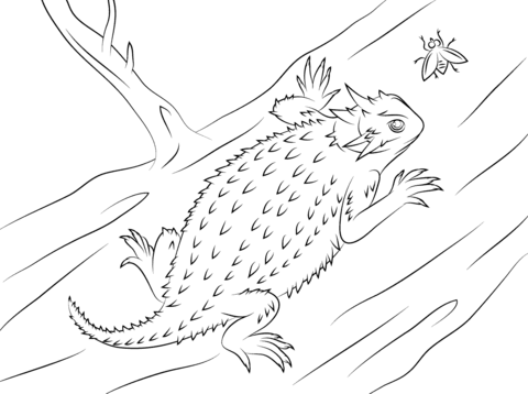 Horned Lizard clipart #6, Download drawings