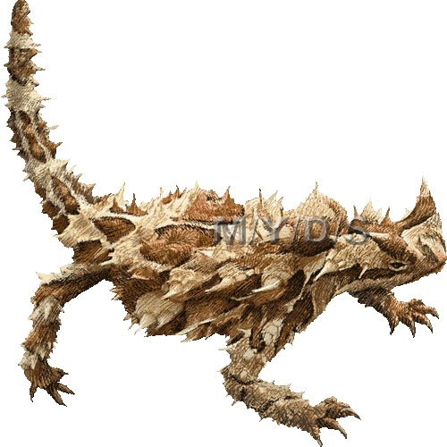 Thorny Devil clipart #10, Download drawings