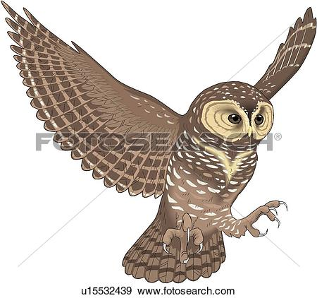 Horned Owl clipart #4, Download drawings