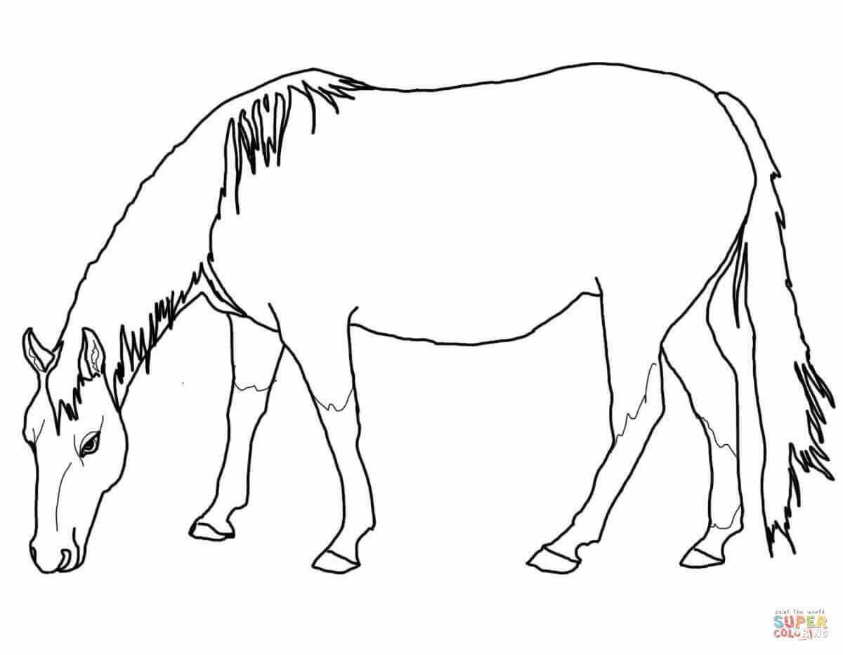 Horse coloring #6, Download drawings