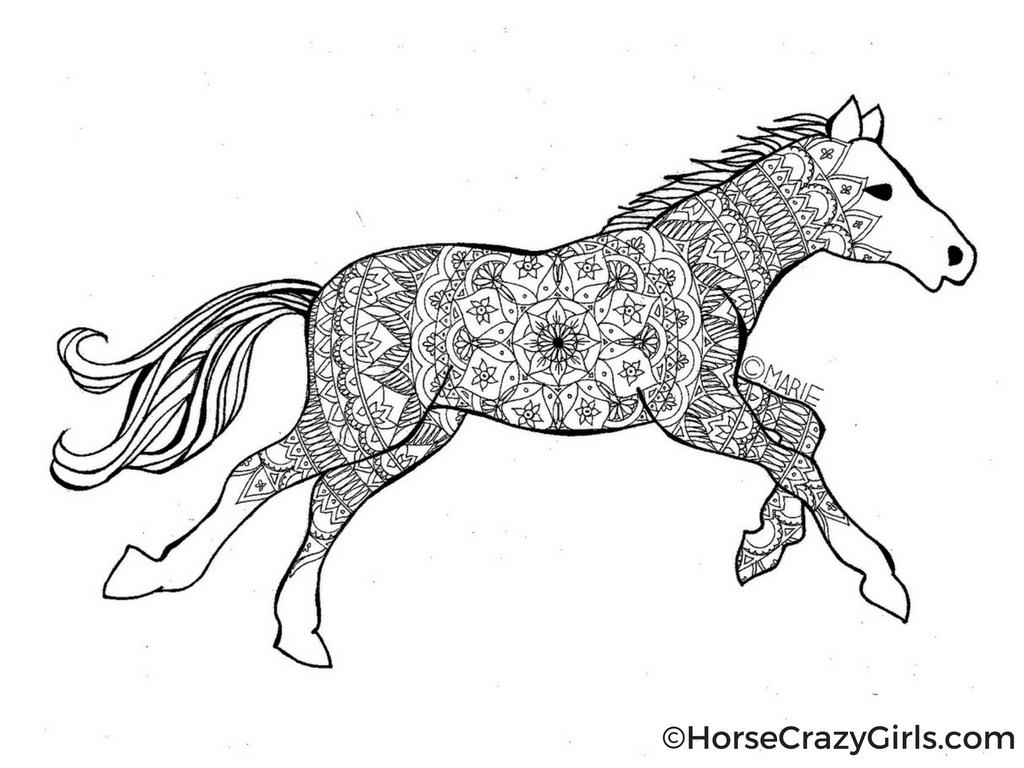 Horse coloring #1, Download drawings
