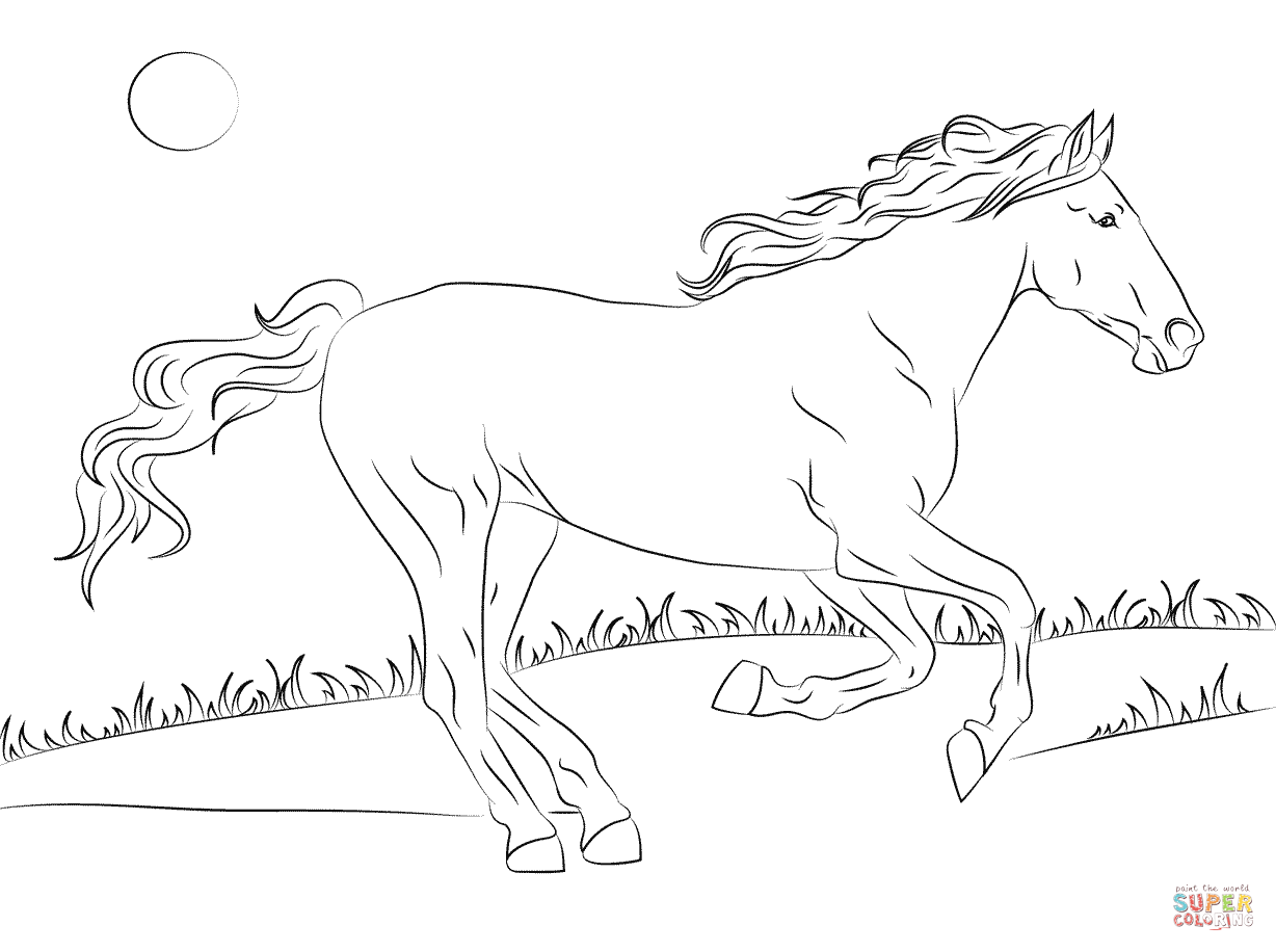 Stallion coloring #1, Download drawings