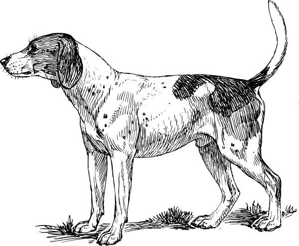 Hound clipart #1, Download drawings