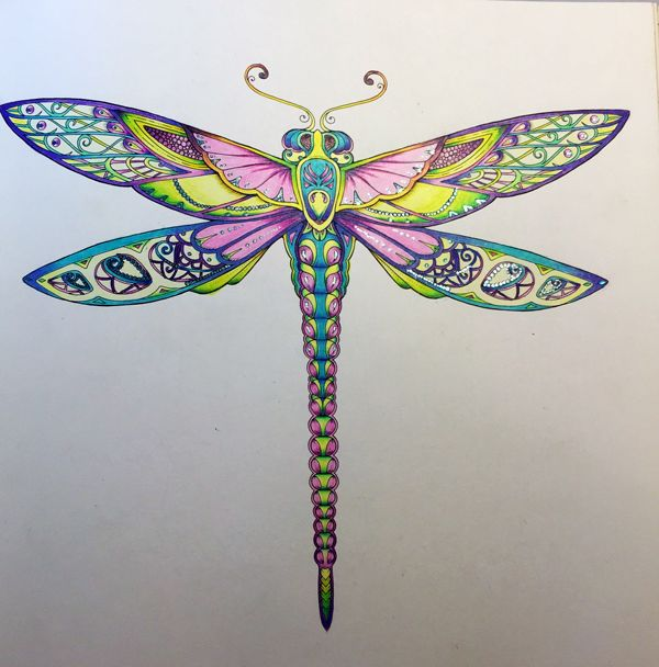 Hoverfly coloring #4, Download drawings