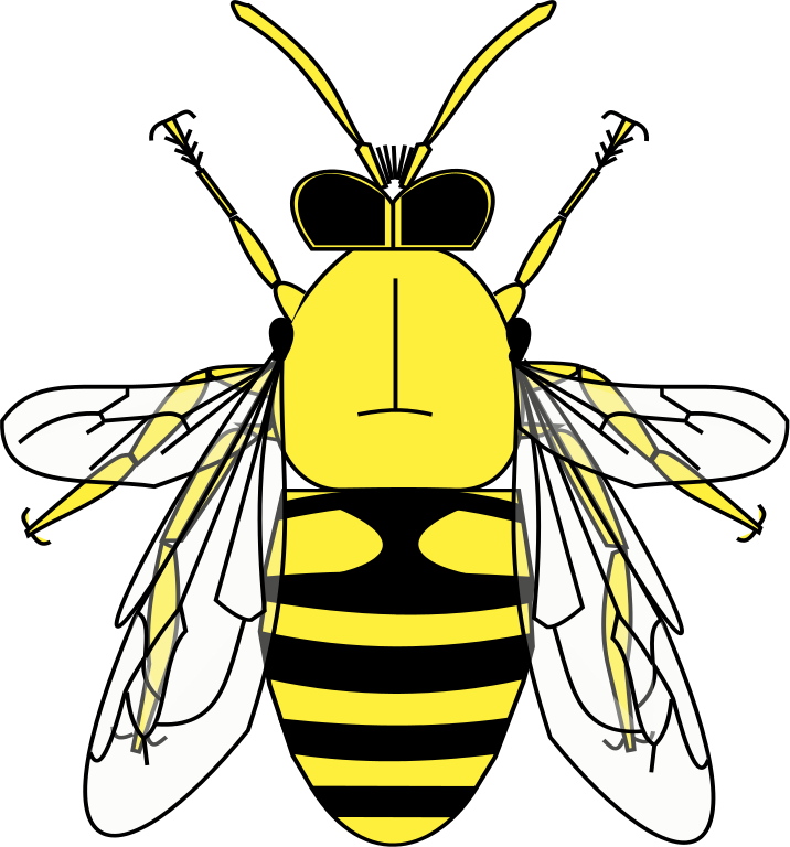 Hoverfly svg #19, Download drawings
