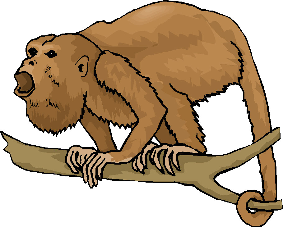 Howler Monkey clipart #18, Download drawings