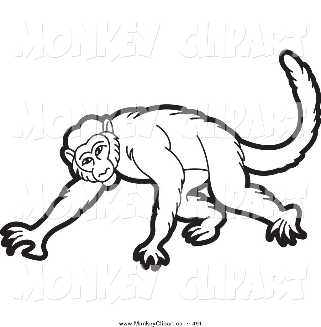 Howler Monkey clipart #7, Download drawings