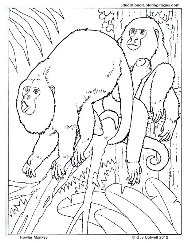 Howler Monkey coloring #16, Download drawings