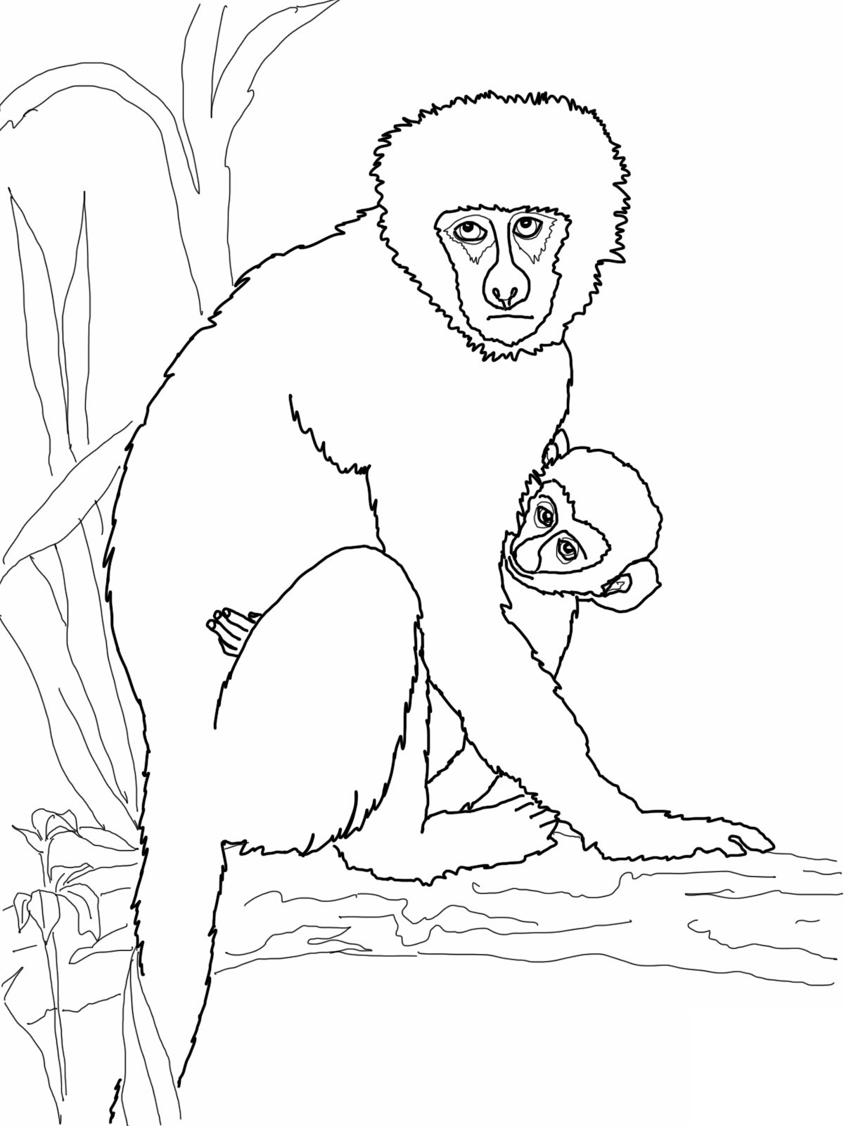 Howler Monkey coloring #17, Download drawings