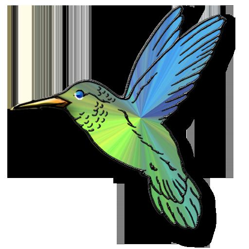 Hummingbird clipart #6, Download drawings