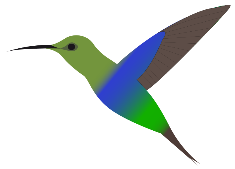 Hummingbird clipart #7, Download drawings