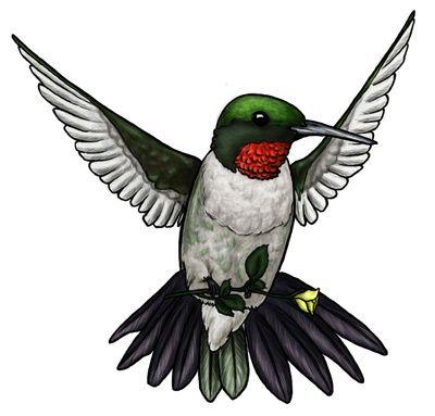 Hummingbird clipart #10, Download drawings