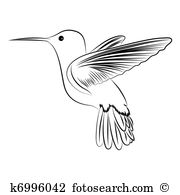 Hummingbird clipart #11, Download drawings