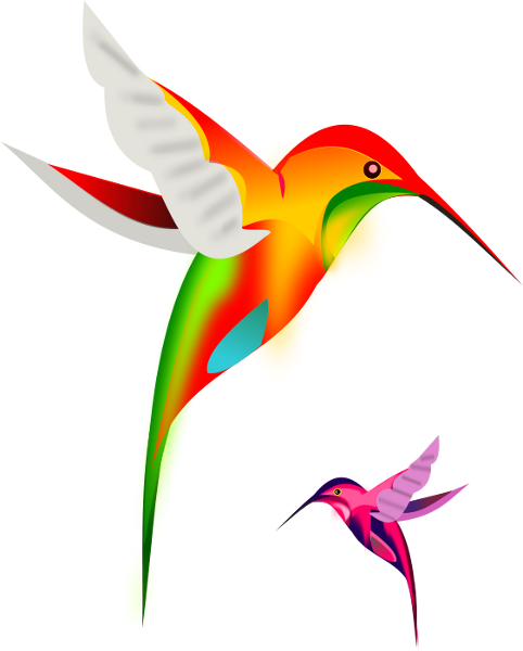 Hummingbird clipart #5, Download drawings