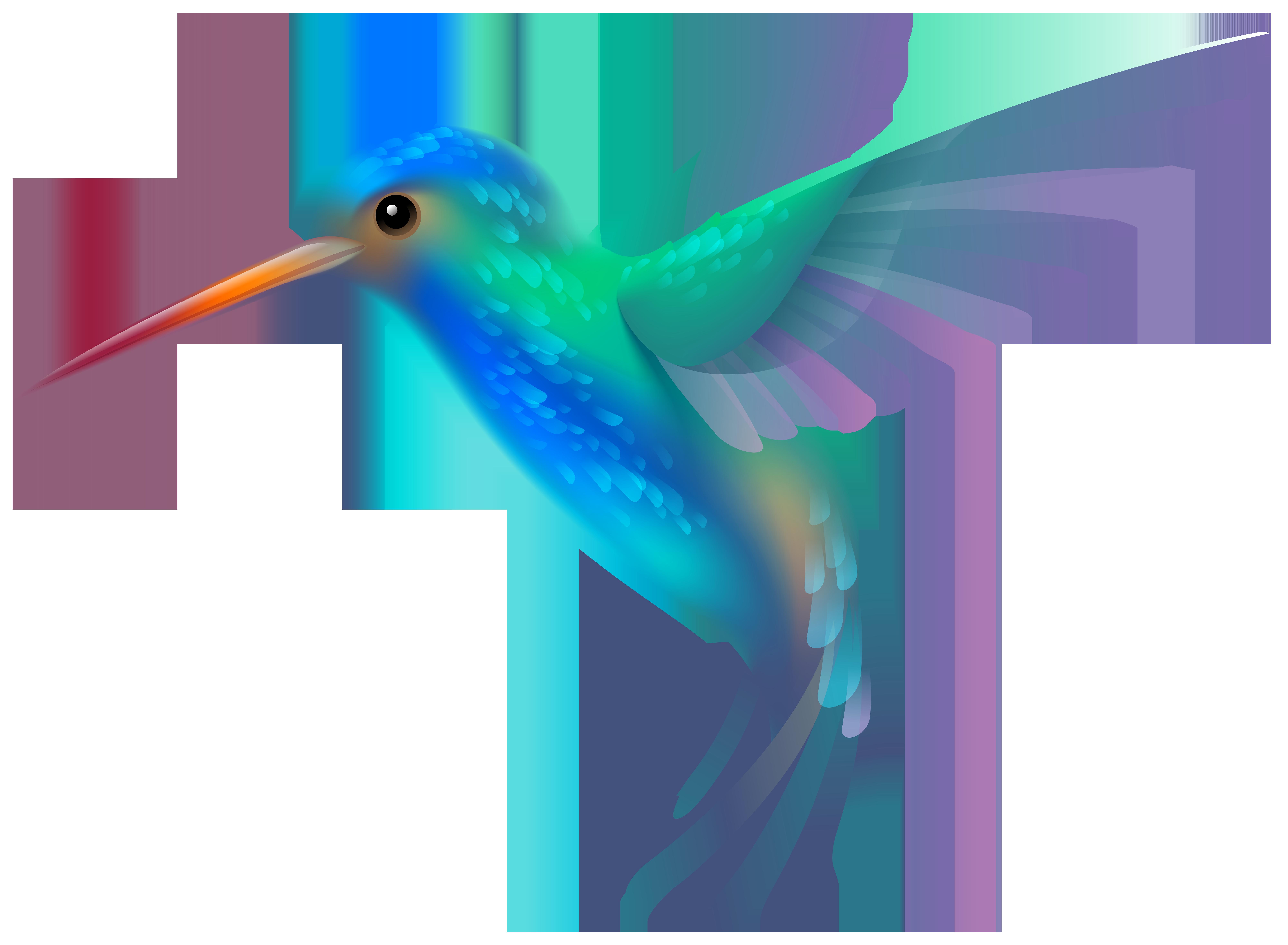 Hummingbird clipart #2, Download drawings