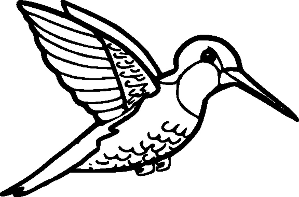 Hummingbird coloring #18, Download drawings