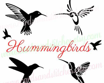 Hummingbird svg #17, Download drawings