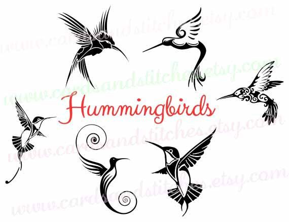 hummingbird svg free #868, Download drawings