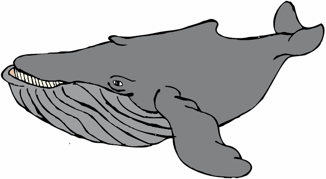 Humpback Whale clipart #4, Download drawings