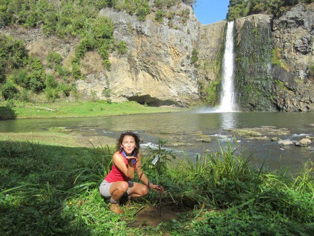 Hunua Falls clipart #12, Download drawings