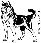 Siberian Husky clipart #1, Download drawings